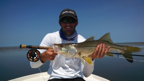 Flamingo snook on fly